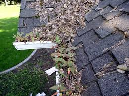 Gutter Cleaning in Williamsburg and York County